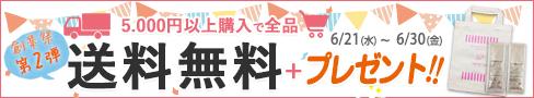 創業祭第2弾!5000円以上購入で送料無料&プレゼント